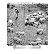 Shepherd With Sheep  Shower Curtain