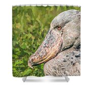 Shoebill Balaeniceps Rex Uganda Africa Shower Curtain