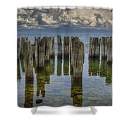 Shore Pilings At Fayette State Park Shower Curtain