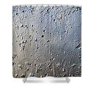 Silver Paint Texture Shower Curtain