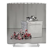 Silver Present Shower Curtain