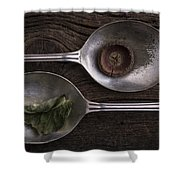 Silver Spoons Shower Curtain by Edward Fielding