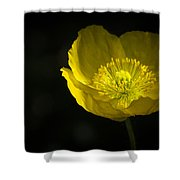 Simple Solitude Shower Curtain