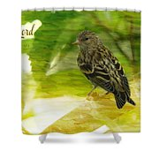 Sing To The Lord Shower Curtain