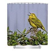 Singing Shower Curtain