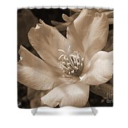 Single Portulaca Shower Curtain