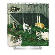Six Cats Shower Curtain