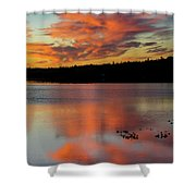 Skilak Lake, Alaska, The Aleutian Shower Curtain