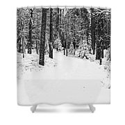 Small Road In A Snowy Forest Shower Curtain
