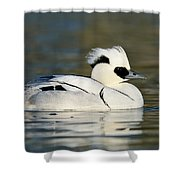 Smew Shower Curtain