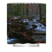 Smoky Mountain Color Shower Curtain