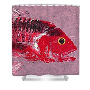 Gyotaku Snapper Shower Curtain by Captain Warren Sellers