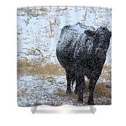 Snow Angus Shower Curtain