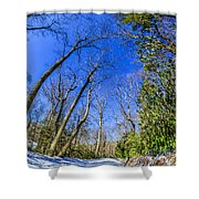 Snow Covered Road Leads Through The Wooded Forest Shower Curtain