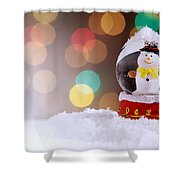 Snow Globe Shower Curtain