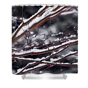 Snowfall And Tree Shower Curtain