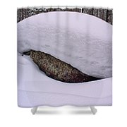 Snowviews Shower Curtain