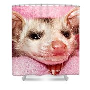 Snuggle Bug Shower Curtain