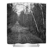 Solitude Forest Shower Curtain