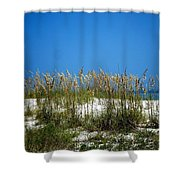 Sowing Wild Oats Shower Curtain