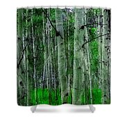 Spectacular Aspens Shower Curtain