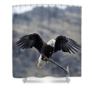 Spread Your Wings Shower Curtain