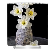 Spring Daffodils Shower Curtain by Edward Fielding