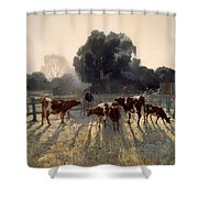Spring Frost Shower Curtain