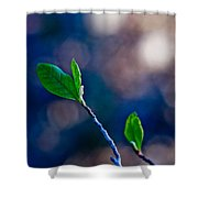 Spring In Bloom Shower Curtain by Linda Unger