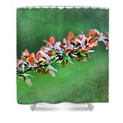 Spring Raindrops On Leaves - Digital Paint Shower Curtain