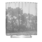 Spring Snowstorm Shower Curtain