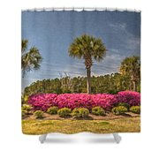 Spring Time In Charleston Shower Curtain