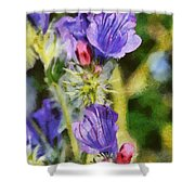 Spring Wild Flower Shower Curtain