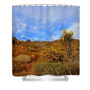 Springtime In Arizona Shower Curtain