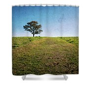 Stands Alone Shower Curtain