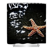 Star Fish Shower Curtain