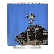 Storks On Top Of Valdecorneja Castle Shower Curtain