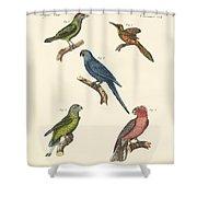 Strange Climbing Birds Shower Curtain