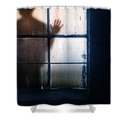 Stranger At The Window Shower Curtain