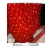 Strawberry Lips Shower Curtain by Joann Vitali