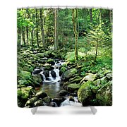 Stream Flowing Through A Forest, Usa Shower Curtain