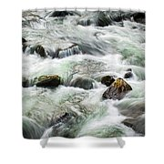 Stream Great Smoky Mountains  Shower Curtain