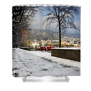 Street With Snow Shower Curtain