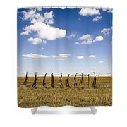 Strung Up Foxes Shower Curtain