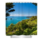 Subtropical Forest Of Abel Tasman Np In New Zealand Shower Curtain
