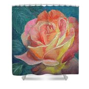 Summer Bloom 1 Shower Curtain