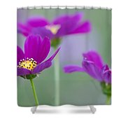 Summer Flowers On Meadow Shower Curtain