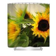 Summertime Shower Curtain