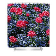 Sun-drenched Flowerbed Shower Curtain