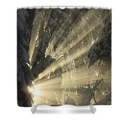 Sunbeam Shower Curtain